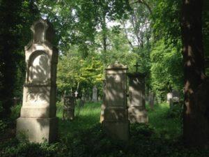 Friedhof SS15